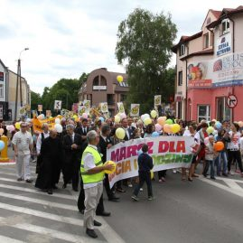 Marsz dla życia i rodziny, 1 czerwca 2014 r.